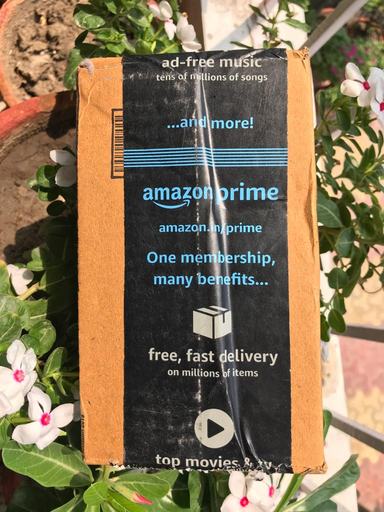 Amazon package in a flower pot