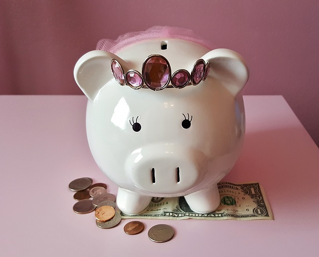 piggy-bank-cmn